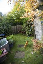 Small back yard with raked autumn leaves piled up on a green lawn against the wall of a garden shed