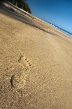 footprints in the sand, a walk along a deseted tropical beach