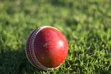 a red leather traditional cricket ball